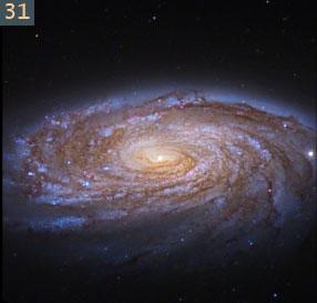 31 spiral galaxy